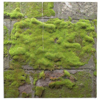 Moss Covered Stones Napkin Stones Diy Cyo Gift Idea Special Garden Projects Growing Moss Types Of Moss