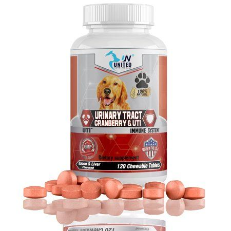 Pets In 2020 With Images Urinary Tract Cranberry Antioxidants