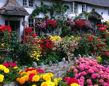 Beautiful English Flower Garden european cottages | england, europe: garden, coombe cottage