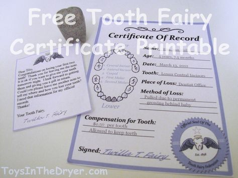 """This free printable tooth fairy certificate is perfect for when your kid looses their first tooth or their last. Comes complete with a """"logo"""" so you can add custom letters from the tooth fairy."""