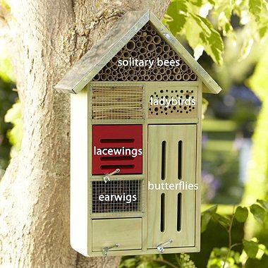 Insect hotel - really great for kids to make, and a fab way to teach them how important insects are to the health of your garden