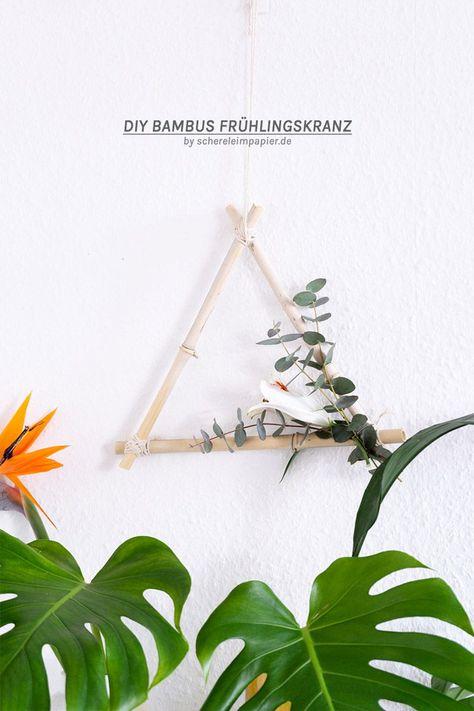 blauer Bambus Geschenketipps für Pflanzenfreunde zu Weihnachten Männergeschenke