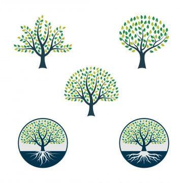 Placa De Madeira Icon Design Tree Logos Tree Icon