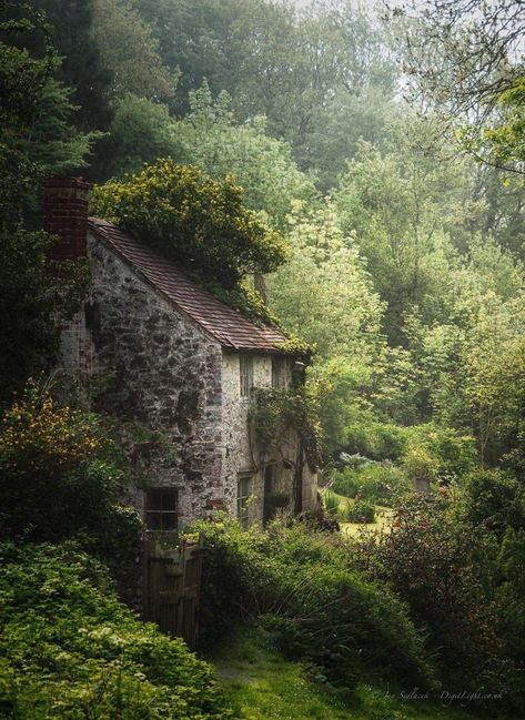 Cottage In The Woods, House In The Woods, Planer Layout, Rustic Exterior, Exterior Design, French Exterior, Exterior Paint, Stone Cottages, Stone Houses