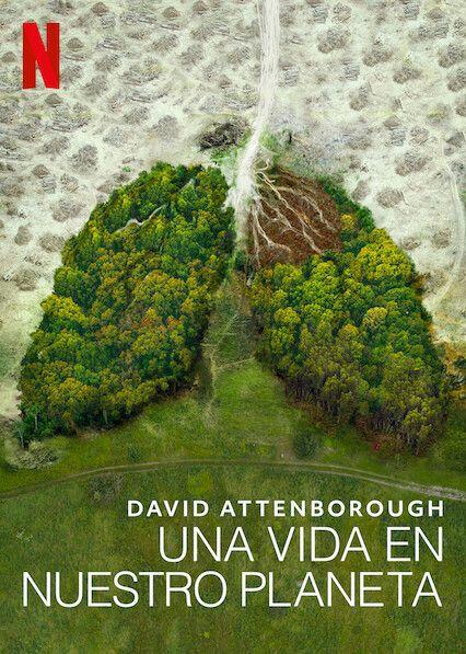 No Te Pierdas David Attenborough Una Vida En Nuestro Planeta En Netflix David Attenborough Planets Our Planet