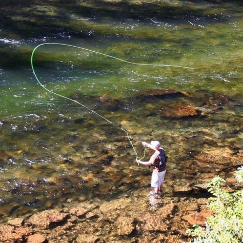 Photo of The Essential Guide to Fly Fishing Gear for Beginners