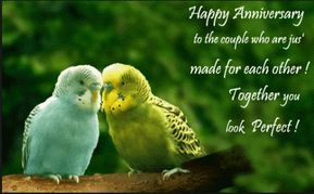 Happy Wedding Anniversary Wishes To A Couple Happy Anniversary Quotes Happy Wedding Anniversary Wishes Wedding Anniversary Quotes For Couple