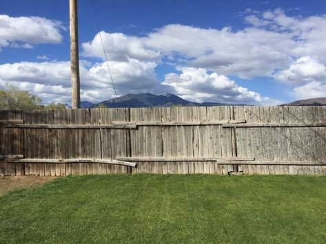 How To Stain A Fence With A Pump Sprayer With Images Outdoor Fence Sprayers