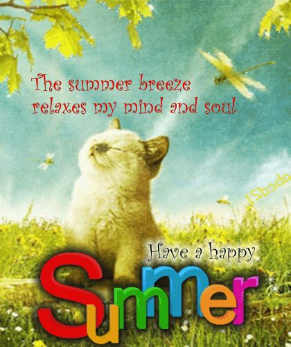 Wish Your Friends A Relaxing Summer Through This Ecard Summer Breeze Summer Happy