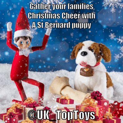 Elf On The Shelf St Bernard Puppy Dog Toys Online Pet Supplies