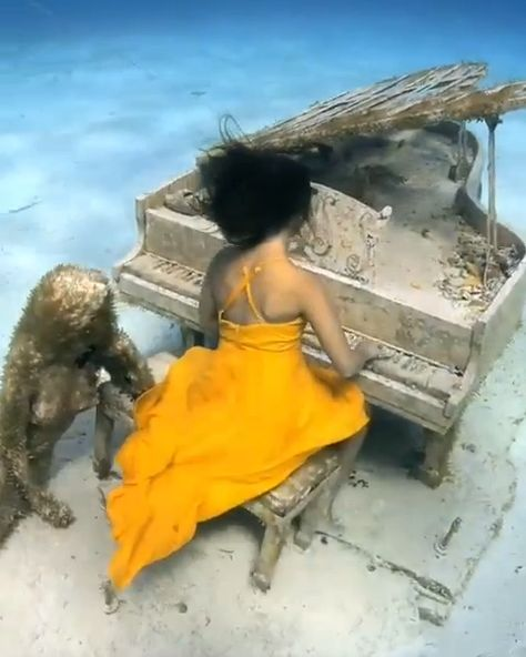 This full-scale sculpture of a mermaid and baby grand piano is hidden underwater in the Bahamas. Magician David Copperfield, who owns multiple private islands within the Bahamas, commissioned the artwork from Jason DeCaires Taylor and had it sunk as a quirky surprise for guests who stay on the private island or those who take boat trips to snorkel off the shore. ⠀ Video: @andremusgrove | underwater model: @freediversteph #bahamas #freediving #diving #adventuretravel⠀