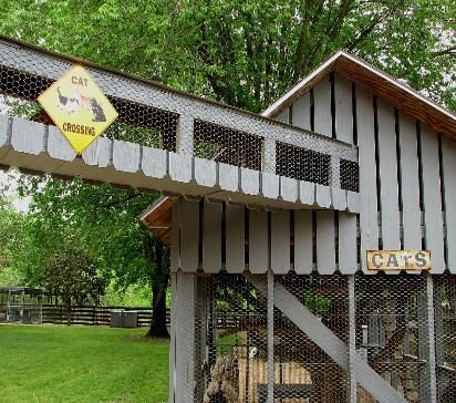 enclosed cat pen for outside   OUR CAT HOUSE. OUR SPOILED HOUSE CATS HAVE AN OUTDOOR