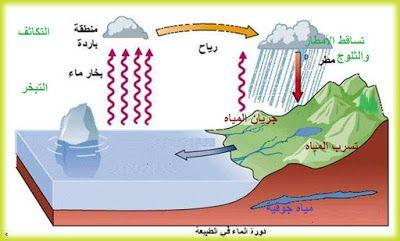 دورة الماء دورة الماء هي دورة وحركة المياه على الأرض وتغير أشكالها من سائل إلى بخار ثم إلى جليد ومرة أخرى إلى سائل Classroom Baby Mobile Blog Posts