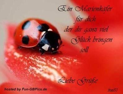 Liebe Grusse Bilder Spruche Liebe Grusse Bilder Spruche Gluck