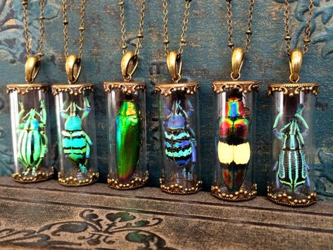 Real Insect Taxidermy necklace Best selling items