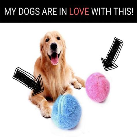 Do you want your dog to be active, healthy and entertained? 🐶🐾 The Active Rolling Ball does it all ! 🙌