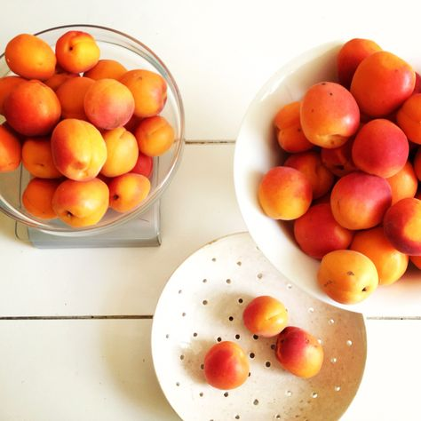 Looking forward to seeing these beauties at the Beaune market this upcoming season. Bergeron apricots!   We are so excited for 2015 and can't wait for our new season of market tours, cooking classes + workshops, and seasonal suppers to begin!   See our website for more information.  #thecooksatelier #cookinginfrance #burgundy #readyforspring  www.thecooksatelier.com
