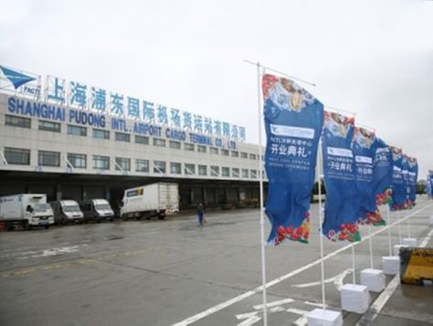 PACTL and Nantong Airport form joint venture STAT Trade Times - joint venture sample