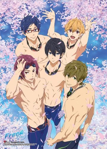Special Edition Group 1 Anime WallScroll