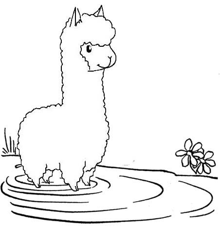Pin By Cs Pengadaan On Alpaca Coloring Pages Animal Coloring Pages Cool Coloring Pages Farm Coloring Pages
