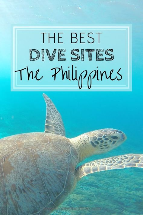 The Very Best Dive Sites In The Philippines In 2019 #bestdivesites #bestdiving #divingphilippines #bestofphilippines #hiddengems