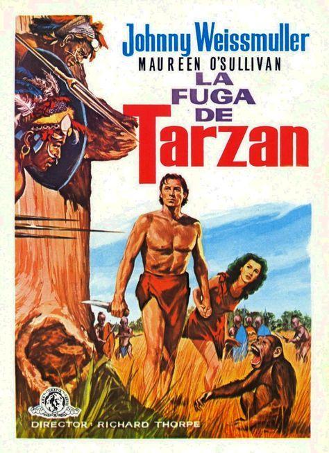 Mi Enciclopedia De Cine 1936 La Fuga De Tarzán Tarzan Escapes Carteles Y Lobby Card Tarzan Pelicula Tarzán Carteleras De Cine