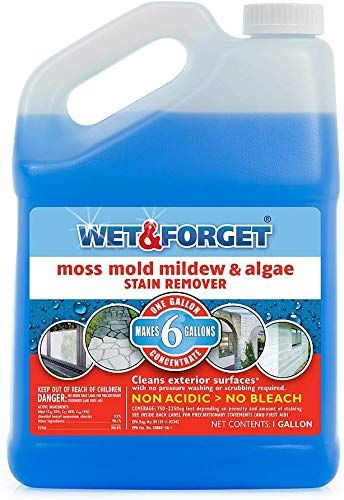 Best Seller Wet Forget Moss Mold Mildew Algae Stain Remover 1 Gallon Concentrate Make 6 Gallons 4 Pack Online Thechicfashionideas In 2020 Cleaning Vinyl Siding Mold And Mildew How To Clean Headstones