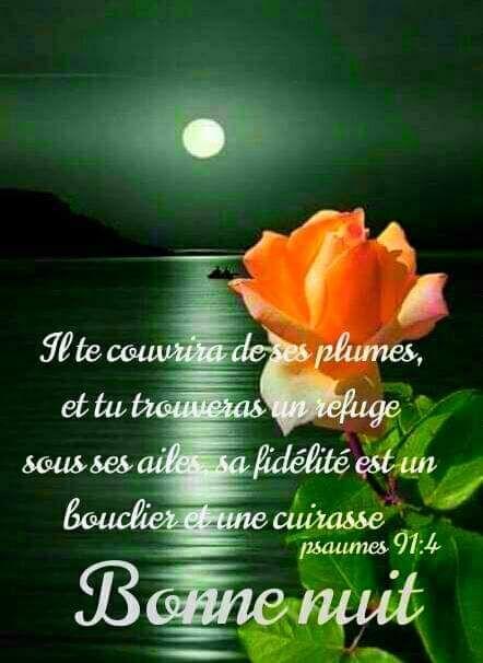 épinglé Par Faith Fig Sur Flowers Message Bonne Nuit