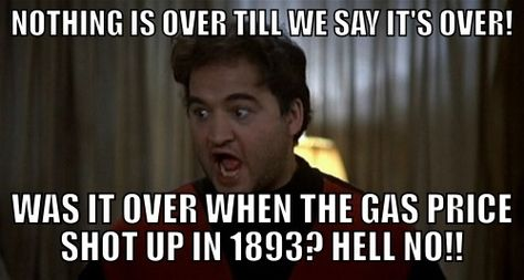 9e28c04105c590a6cd3a8bc6beab510a animal house yahoo national lampoons animal house memes yahoo image search results