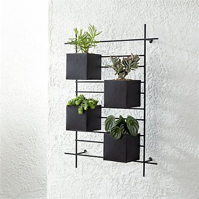 4 Box Wall Mounted Planter Reviews Crate And Barrel In 2020 Wall Planters Outdoor Wall Mounted Planters Metal Wall Planters