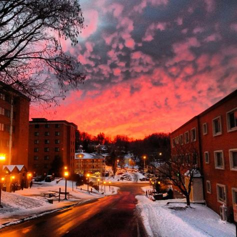On the campus of Appalachian State University, Boone, NC