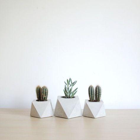 Items similar to Modern planter set / mini succulent planter / Octahedron concrete planter / Geometric planter / Cactus pot / Cement planter / Concrete pot on Etsy