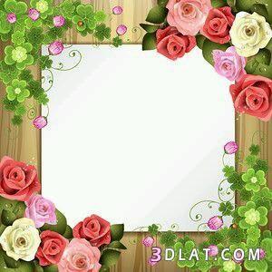 اطارات الاطارات عليها2018 فارغه للتصميم للكتابه والبراويز ورود Flower Frame Flower Border Clipart Floral Border Design