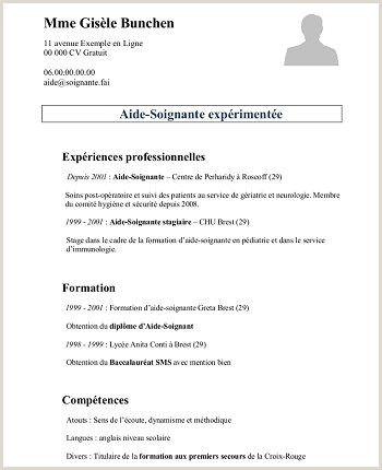 Exemple De Cv Campus France France Campus