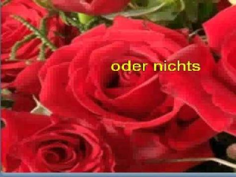 für mich solls rote rosen regnen chords