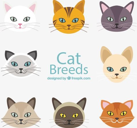 Millions Of Png Images Backgrounds And Vectors For Free Download Pngtree Hand Painted Cat Cat Face Cat Vector