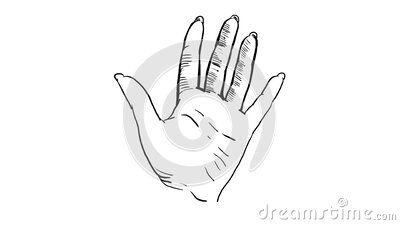 Hand Drawing Animation Graphic Sketch Of A Palm Hand On A White Background 4k Download From Over 136 Million H In 2020 How To Draw Hands White Background Drawings