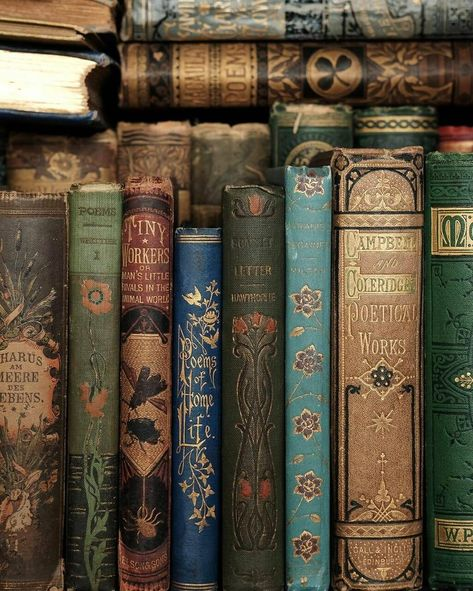 Book Aesthetic, Aesthetic Pictures, Slytherin Aesthetic, Laura Lee, Book Nooks, Vintage Books, Love Book, Wall Collage, Aesthetic Wallpapers