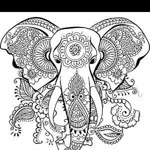 Ethnischen Elefant Svg Mandala Elefant Svg Elefant Svg Monogramm