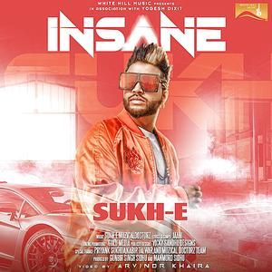 Insane - Sukh-E - Mp3 Song Download PagalWorld com | LOVE