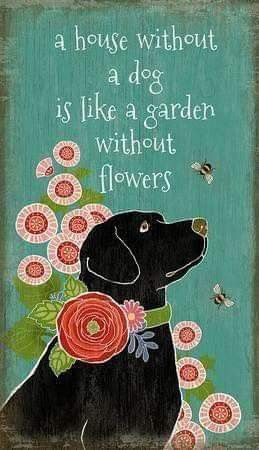 Pin By Cassie Garner On Living With Dogs Dog Quotes Dog Love Dog Lovers