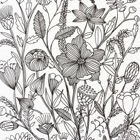 36 Ideas For Flowers Garden Drawing Colour