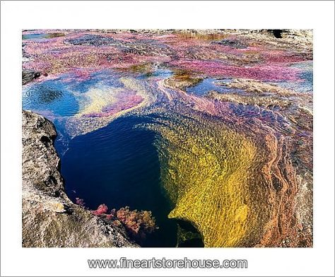 Print of CaA±o Cristales, River is Five Colours