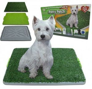Dog Grass Pad The Modern Way To House Train Your New Dog Dog Potty Puppy Pads Dog Training