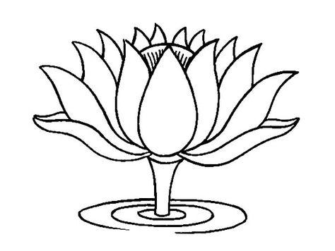 Lukisan Bunga Teratai Hitam Putih Cikimm Com