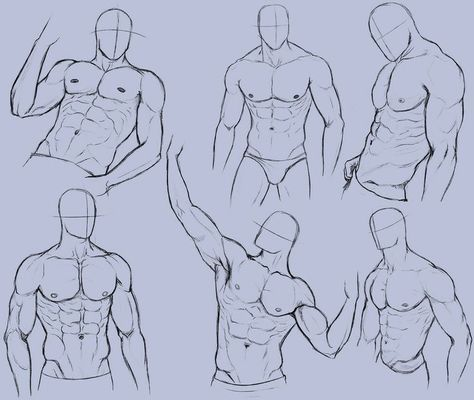 Drawing Reference Body Male Torso 70 Super Ideas In 2020 Male Figure Drawing Drawing Body Poses Man Anatomy