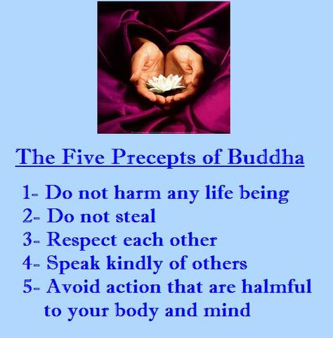 more Developing Buddhist Practice