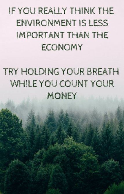 19 Ideas Protect Nature Quotes Environment For 2019 Quotes
