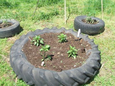 Tractor Tire Raised Bed Garden In 2020 Traktorreifen Garten Hochbeet