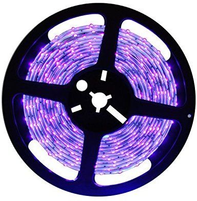 Amazon Com Deepdream Black Light Uv Led Strip 16 4ft 5m 24w Flexible Waterproof Ip65 With 12v 2a Power Supply Home Black Light Led Uv Black Light Black Light